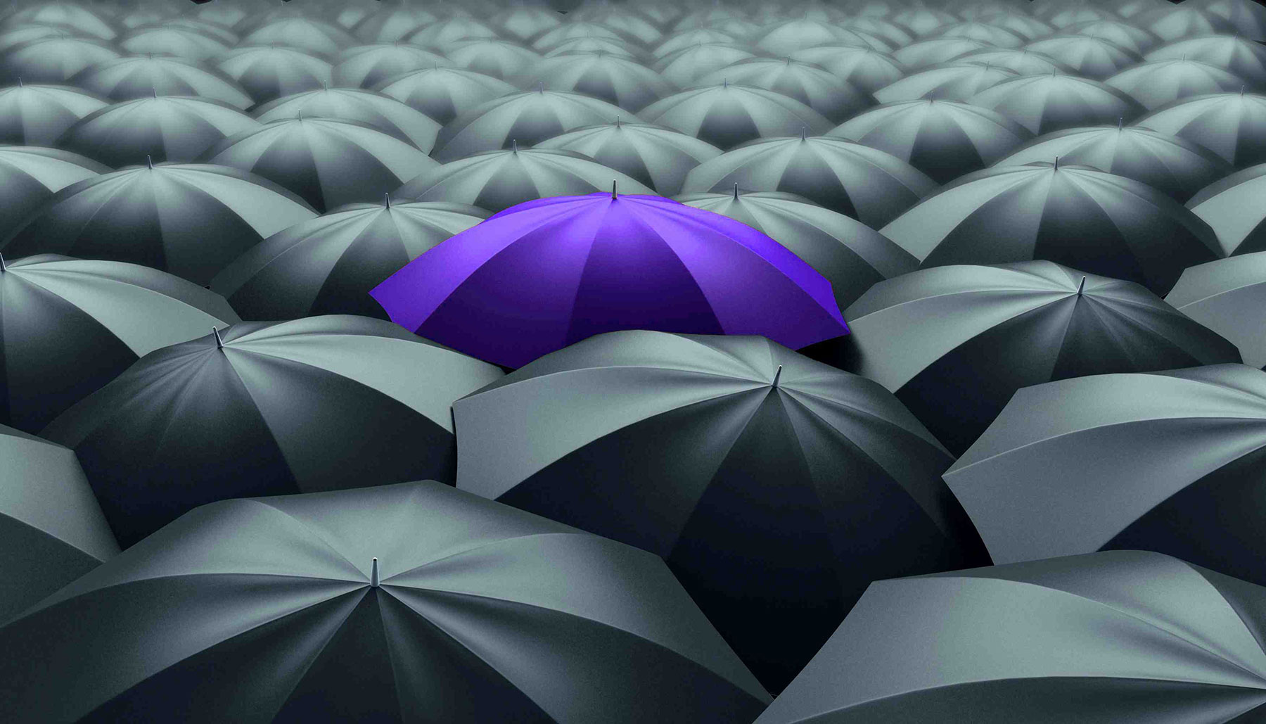Umbrella-purple-1800px